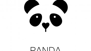 What is Google panda and how does it work?